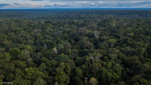 Amazon rainforest is ours and not yours, Brazil tells the world