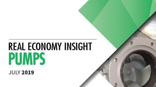 Real Economy Insight 2019: Pumps