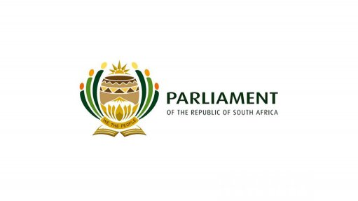 Economic development, trade department must lead initiatives – parliament committee