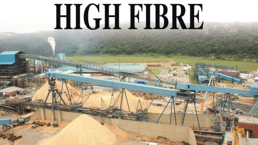 Sappi Saiccor mill upgrade underpinned by 'healthy' dissolving wood pulp demand