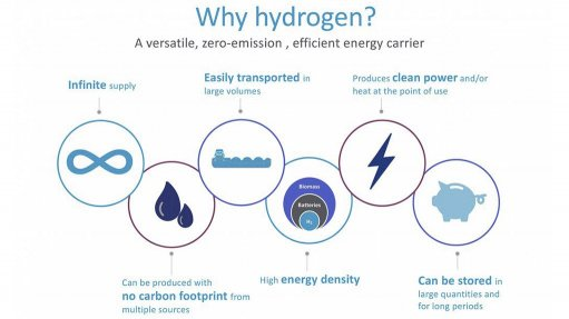 Green hydrogen proposed for buses in South Africa