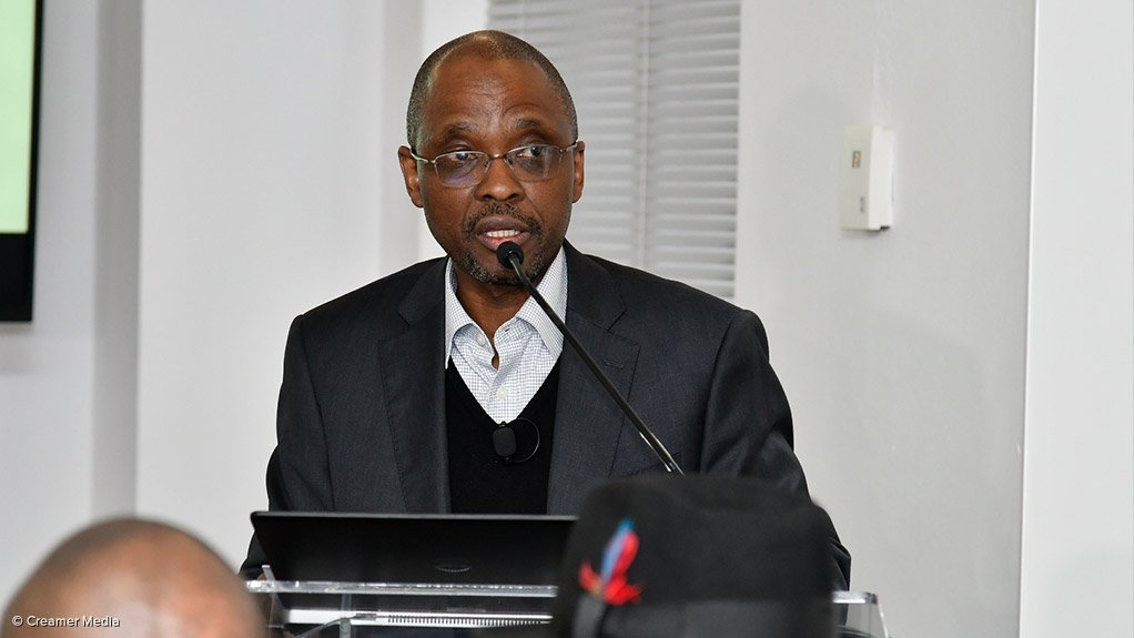 Minerals Council South Africa president, Mxolisi Mgojo