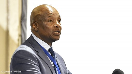 Any further delay to IRP approval will increase load-shedding risk, Busa warns
