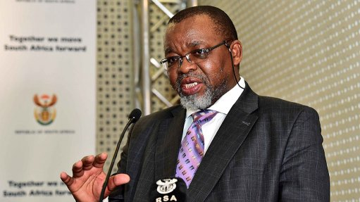 Mantashe calls for more investment in South Africa's gas industry