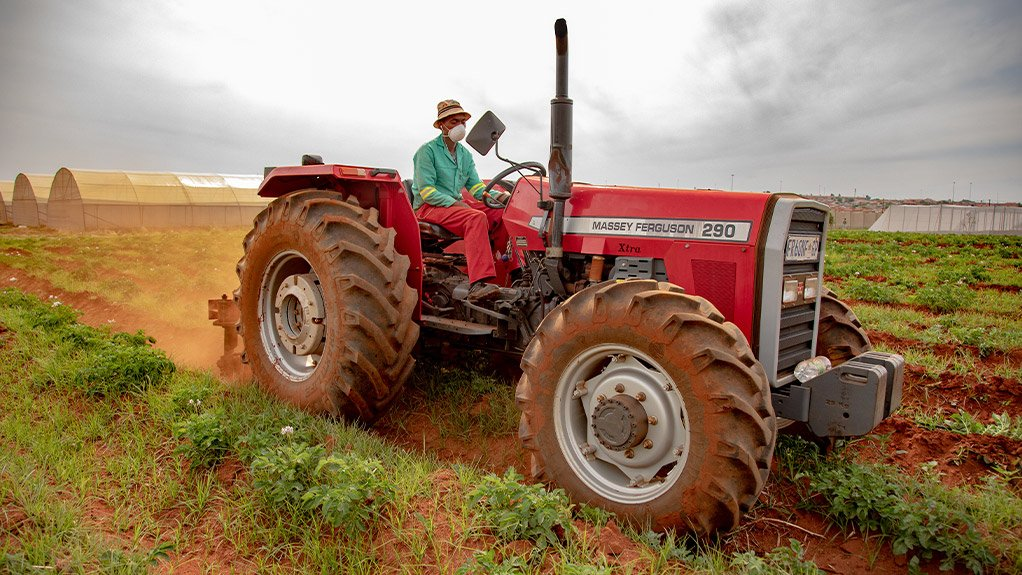 Prolonged drought hits South African farmers' resilience