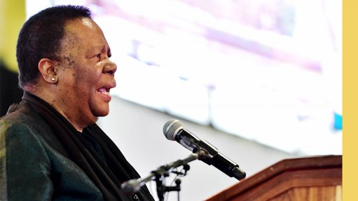 Putting Africa in back of queue for ventilators will be detrimental for humanity – Pandor