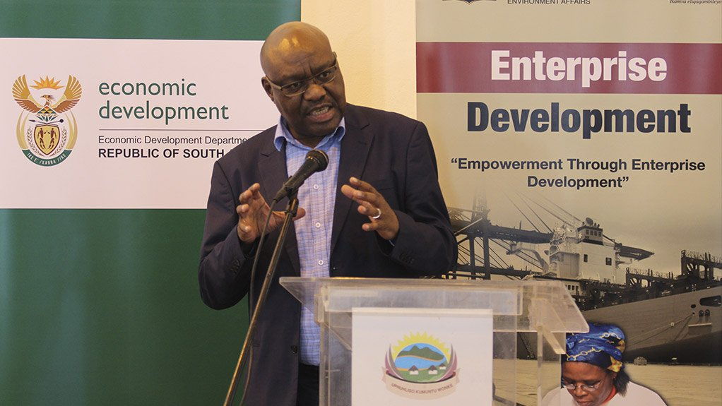Deputy Minister of Trade, Industry and Economic Development Fikile Majola