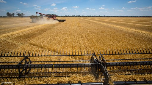 Agriculture to grow this year, but long-term market impact remains uncertain