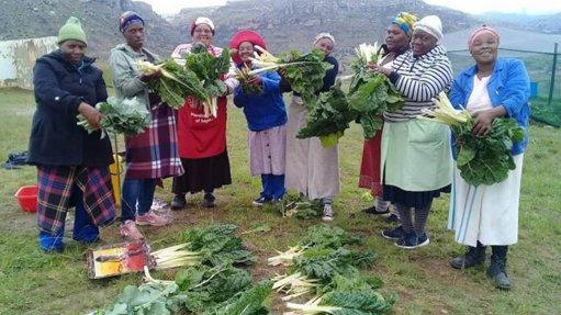 SA corporates boost community food gardens
