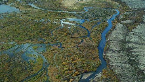 Northern Dynasty stock tumbles further as doubts grow over Alaska's Pebble mine