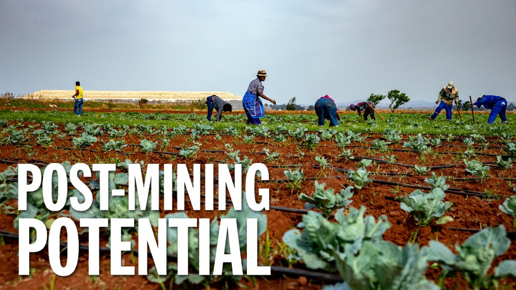 Repurposing of mining land could help create farming jobs at scale