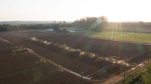 Sun Exchange launches first of three crowd sales for 1.9 MW solar project in Zim