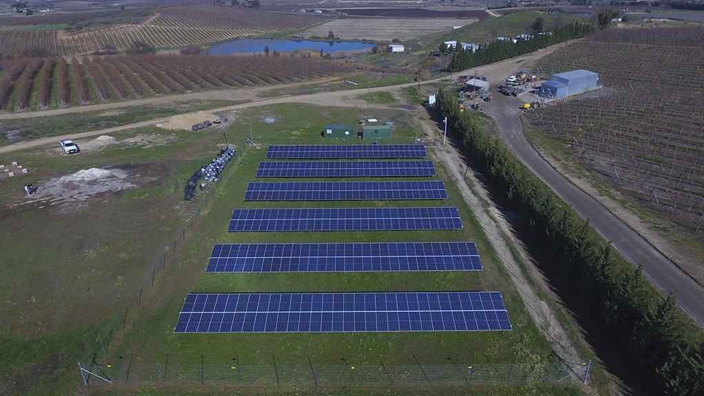 Solar farm at the El Cuesta Farming operation in Ceres