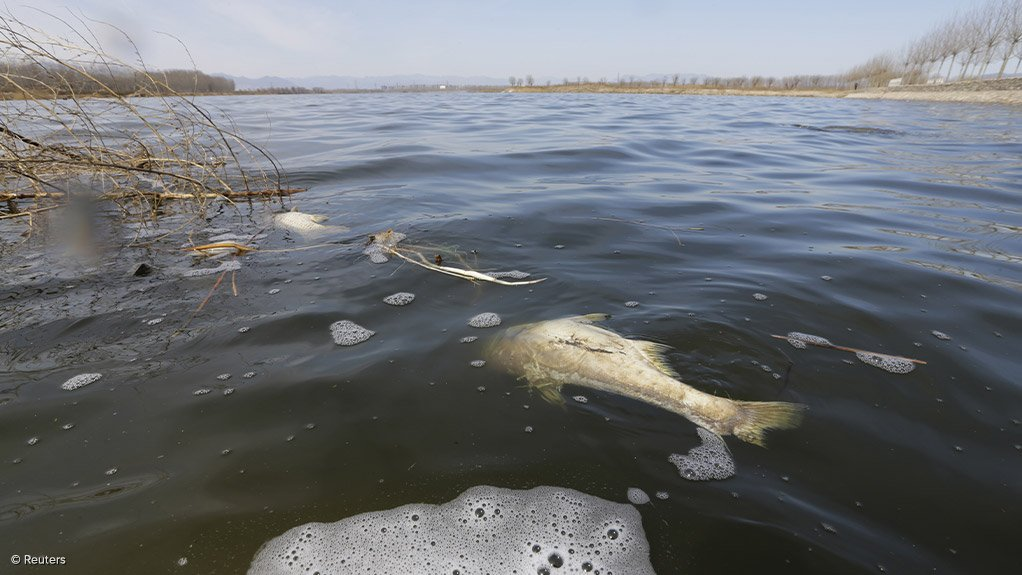 SAHRC recommends Emfuleni municipality be placed under administration amid ongoing Vaal river pollution