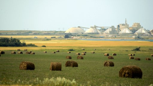 Nutrien eyes potash sales in regions where prices are strongest