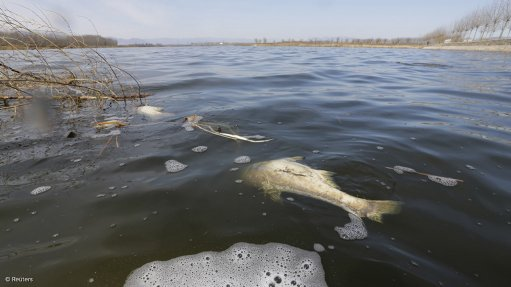 Commission calls for range of interventions following  Vaal river pollution probe