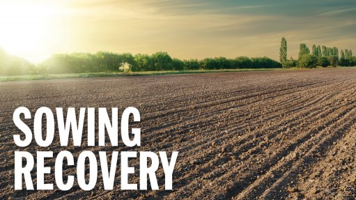 Agriculture has potential to ignite SA's recovery, but finance and policy constraints weigh