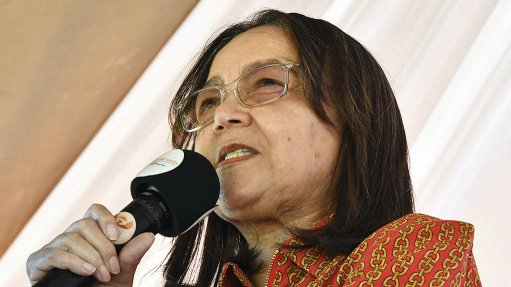 'Not fit for purpose': Patricia de Lille explains why Beitbridge border fence won't be repaired
