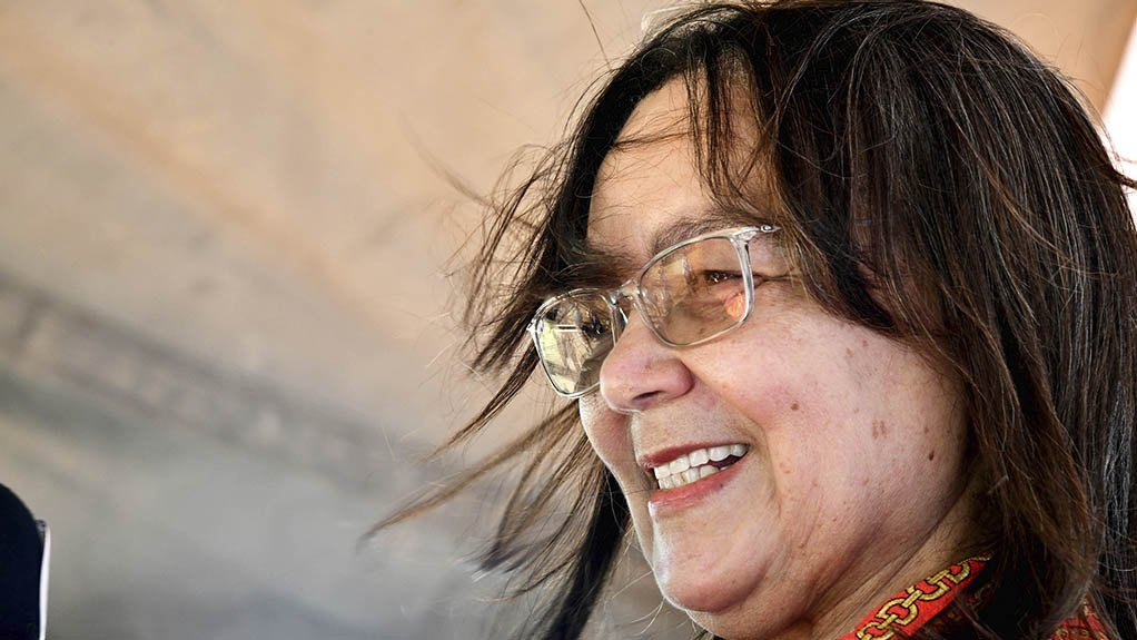 PATRICIA DE LILLE All projects will be subject to an independent due-diligence process