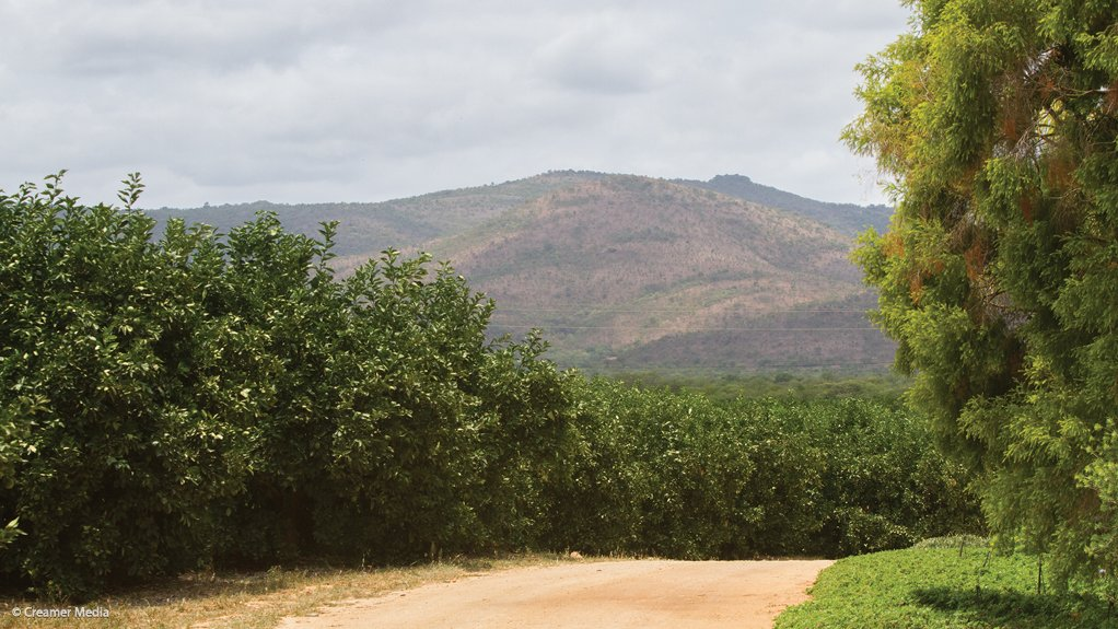 Agriculture seen as key just transition enabler in Mpumalanga, but arable land needs urgent safeguarding