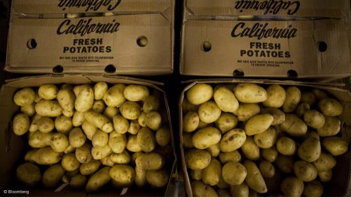Potatoes South Africa calls for more partnerships between commercial, small-scale producers