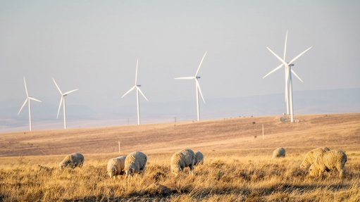 Golden Valley Wind Energy Facility, South Africa
