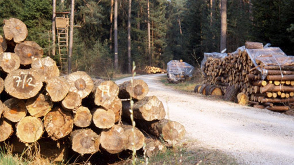 WOOD REDUCES CARBON OMMISIONS Carbon dioxide is removed from our atmosphere by wood plantations during their rotations of seven to 20 years.