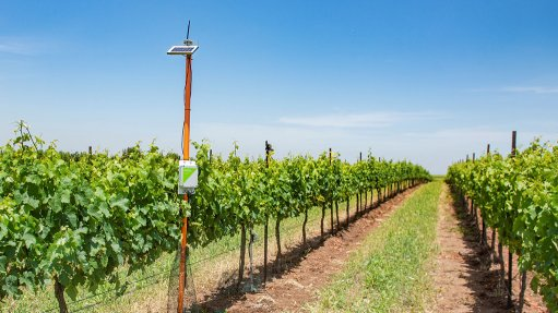 Smart irrigation tech grows presence in South African market