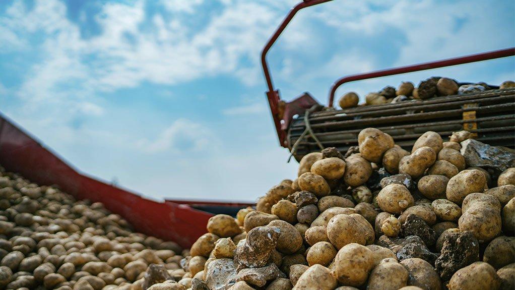 McCain Foods potatoes