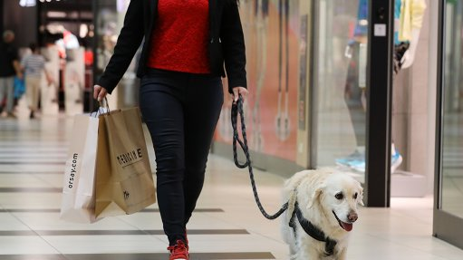 Pic of a Dog in one of EPP's shopping centres.