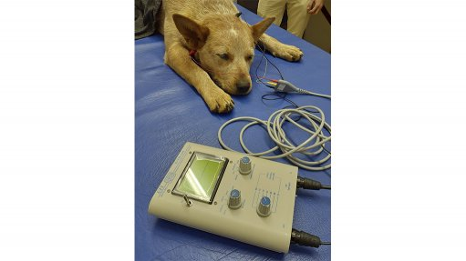An image of a dog's hearing being tested using the UFI BAERCOM device acquired by the Onderstepoort Veterinary Academic Hospital.