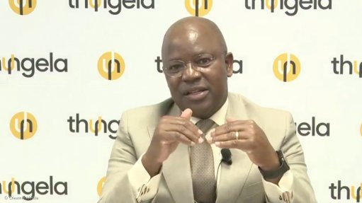 Screenshot taken by Creamer Media of July Ndolvu during August 2021 presentation of results.