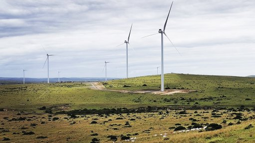 Pic/Image of the Wesley-Ciskei wind energy farm.