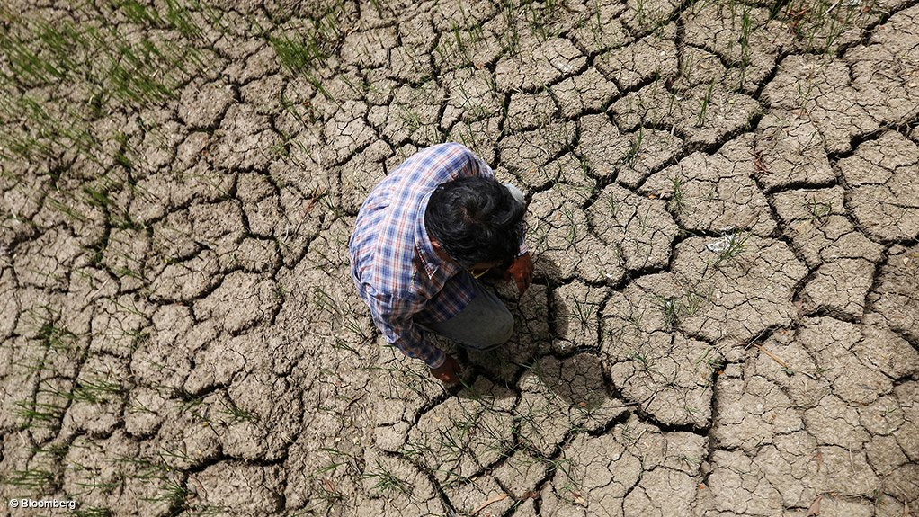 Photo of man standing on dry earth