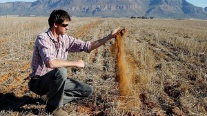 South Africa's struggling agricultural sector: what went wrong 20 years ago