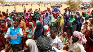 Over 8m Ethiopians need food aid due to violence, drought – government