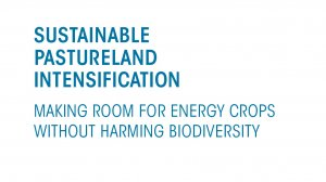 Sustainable pastureland intensification: Making room for energy crops without harming biodiversity