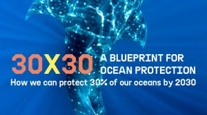 30×30: A Blueprint for Ocean Protection