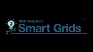 Risk Snapshot: Smart Grids