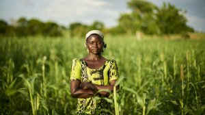 Assessing the effectiveness of private finance blending in ensuring that small-scale farmers are not left behind