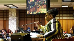 SA: Statement By Parliament Presiding Officers On Africa Day And Presidential Inauguration