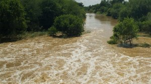 Eastern Cape dams improve