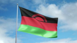 Malawi's ruling party wants judges probed over nullified election