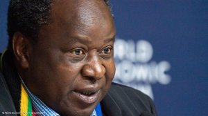 'They stole most of the ANC's ideas.' Mboweni attacks EFF leaders