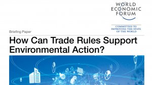 How Can Trade Rules Support Environmental Action?