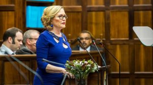 Zille's virtual congress plans to be opposed