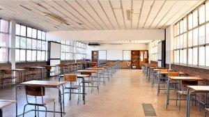 Sadtu resolves that schools close until after Covid-19 peak