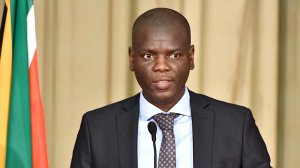 South Africa needs a permanent, multi-skilled unit to fight corruption - Lamola