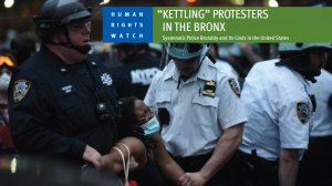 Systemic Police Brutality and Its Costs in the United States
