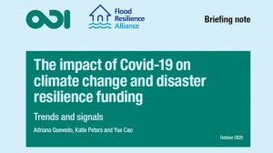 The impact of Covid-19 on climate change and disaster resilience funding: trends and signals